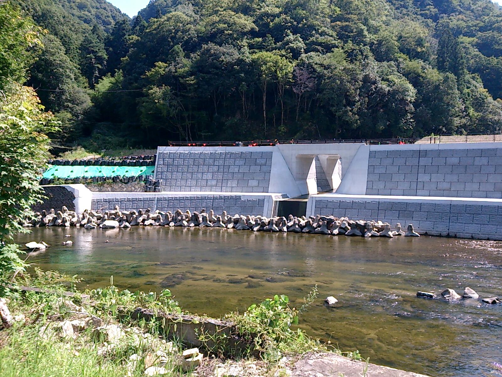 武庫川の整備1