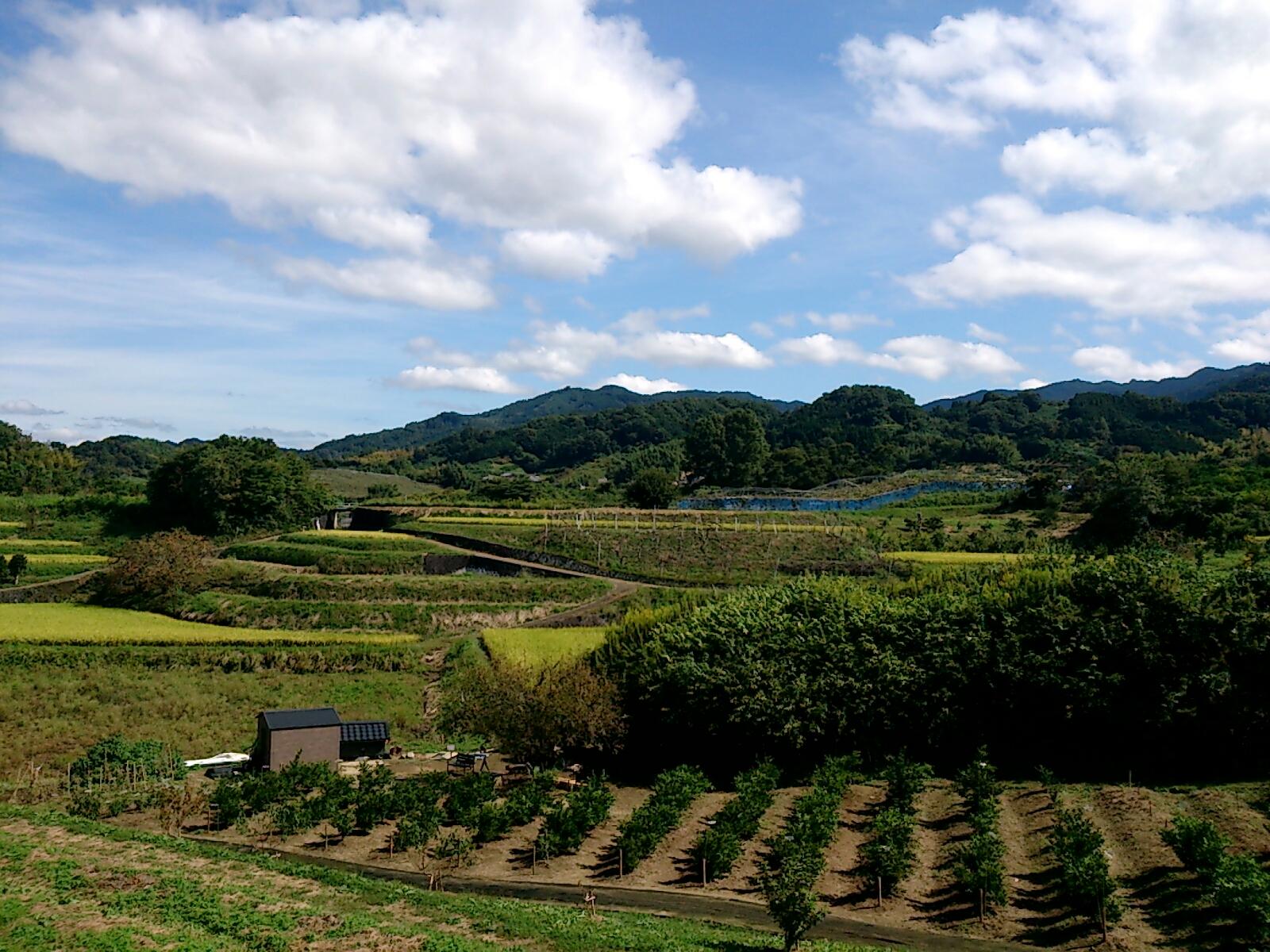 明日香村の風景1