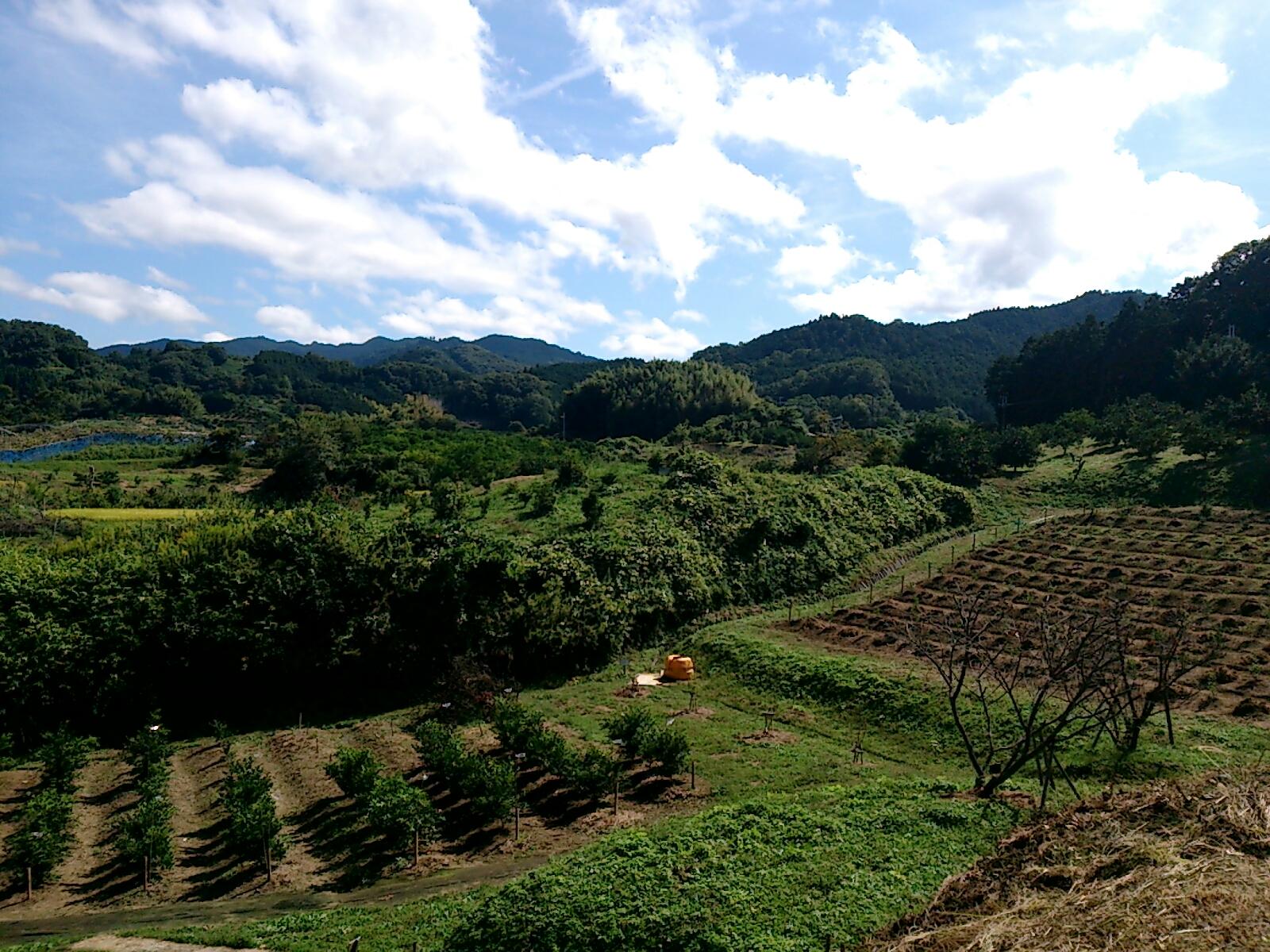 明日香村の風景2