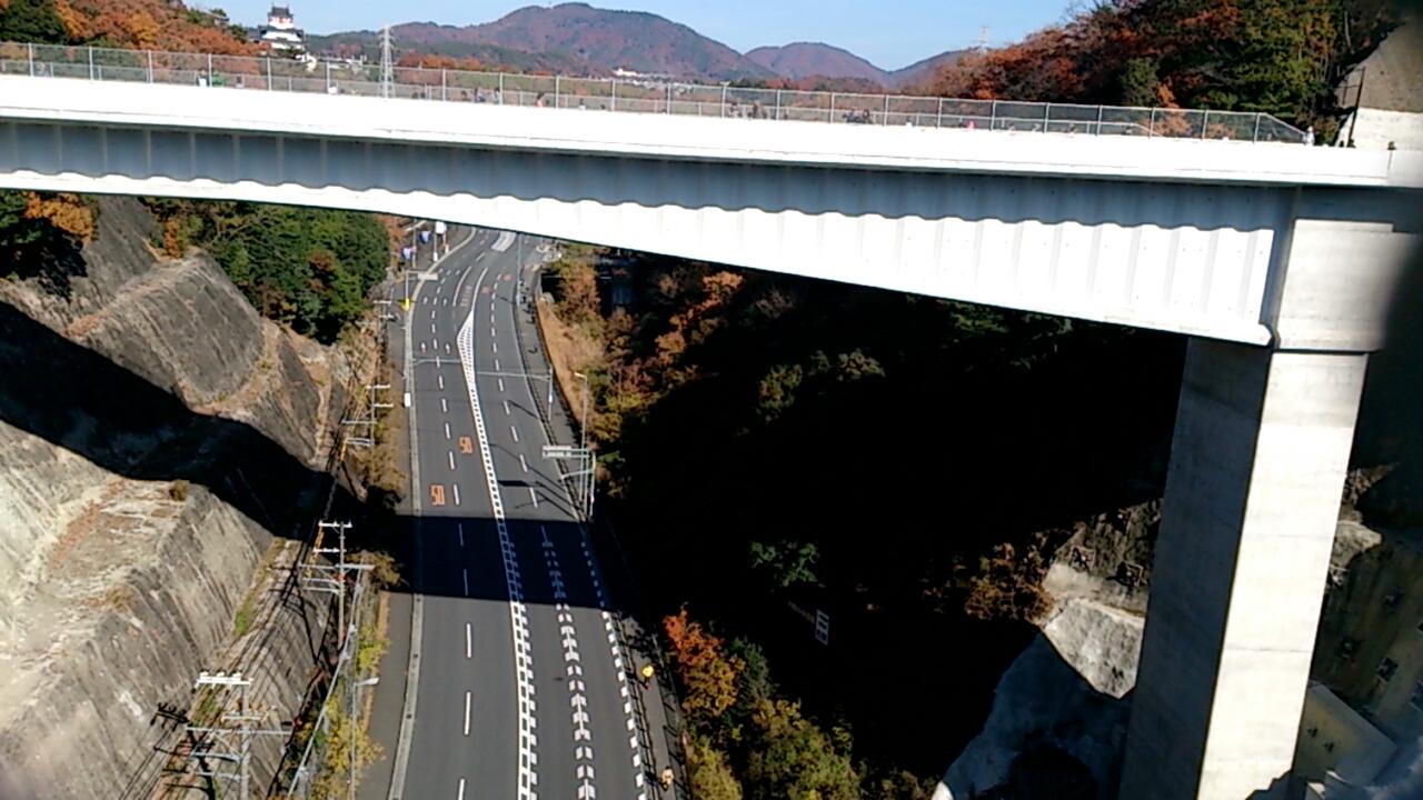 平野橋から北側の国道173号線を望む