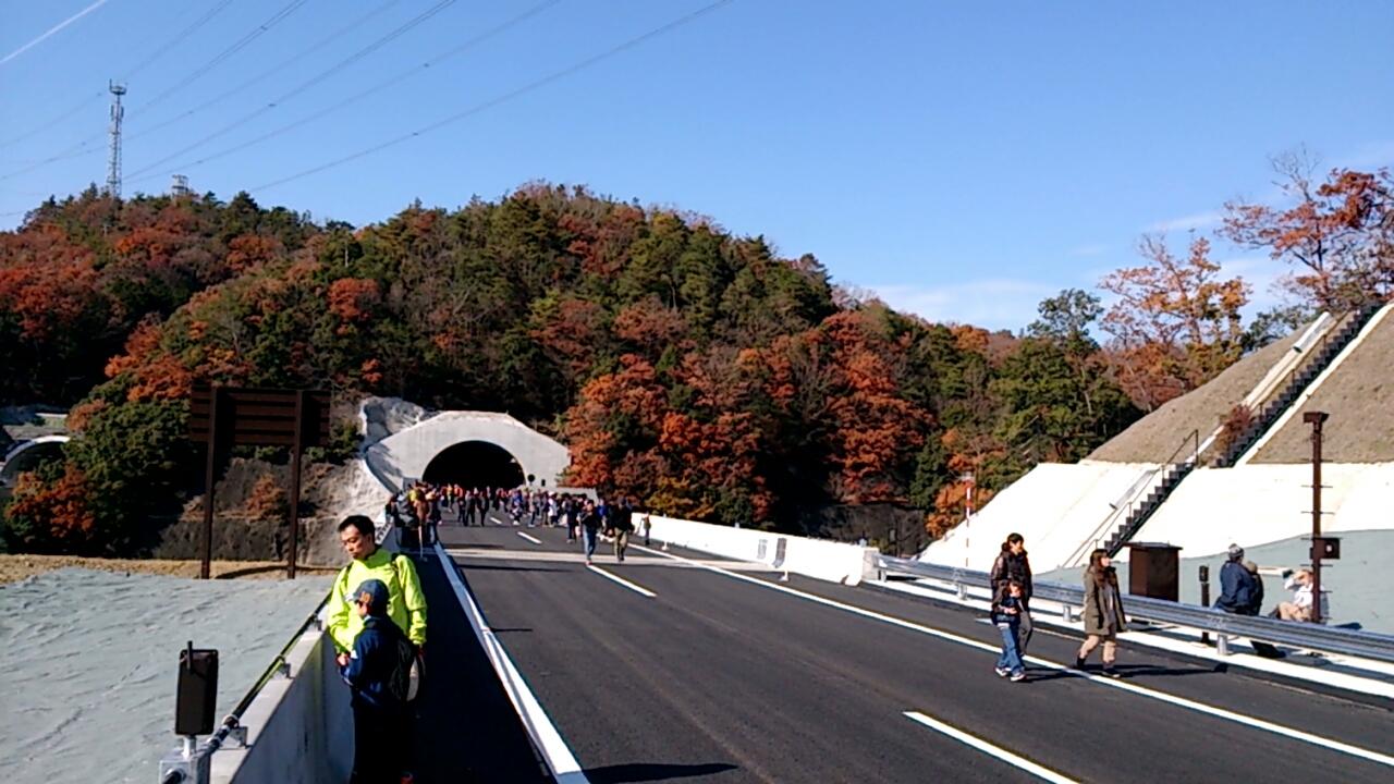 川西トンネル出口の山の木々
